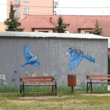 Kolorowa łąka i dwa mecha-ptaki w Małkini Górnej